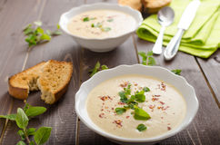 Creamy zucchini soup with chilli and oregano Royalty Free Stock Images