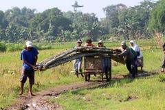 Create bambo bridge Royalty Free Stock Photography