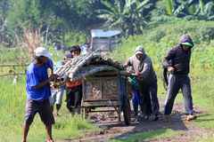 Create bambo bridge. People carrying bamboo to create a bridge in Boyolali, Central Java, Indonesia Royalty Free Stock Images