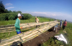 Create bambo bridge Stock Images