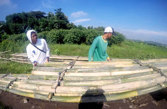 Create bambo bridge Stock Photo