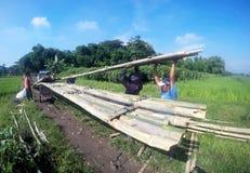 Create bambo bridge Royalty Free Stock Image