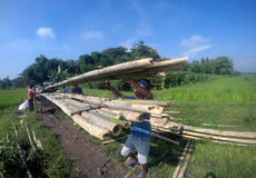 Create bambo bridge. People carrying bamboo to create a bridge in Boyolali, Central Java, Indonesia Stock Photo