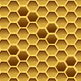 Create honeycomb with larvae texture Royalty Free Stock Image