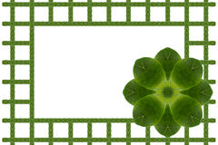Create from leaf Royalty Free Stock Photography