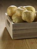 Create of potato Royalty Free Stock Photos