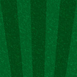 Create sport green field texture background royalty free illustration