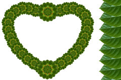 Creatief bloemenblad van hart Stock Foto