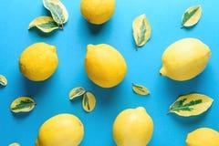 Creatief die de zomerpatroon van citroenen en groene bladeren wordt gemaakt Stock Foto