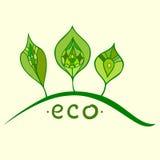 Creatief Ecologieconcept Stock Foto's