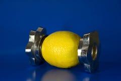 Creatieve citroen Stock Afbeelding