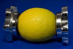Creatieve citroen 2 Royalty-vrije Stock Foto's