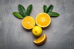 creatieve collage: een het glimlachen gezicht van sinaasappelen en citroen wordt gemaakt die Stock Foto