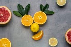 creatieve collage: een het glimlachen gezicht van sinaasappelen en citroen wordt gemaakt die Royalty-vrije Stock Afbeeldingen