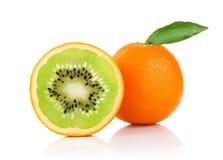 Creatieve conceptie van sinaasappel en Stock Foto