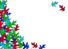 Creatieve de herfstachtergrond De bladeren van de regenboogesdoorn op een witte achtergrond vector illustratie