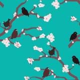 Creatieve en kleurrijke aardvogels en naadloze het patroonvector van de bloembloesem stock illustratie