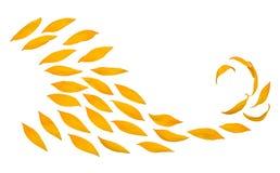 Creatieve ideebloem van een zonnebloembloemblaadjes die in de wind vliegen Abstractie en golf Landbouwonderwerpen Plaats voor tek royalty-vrije stock afbeelding