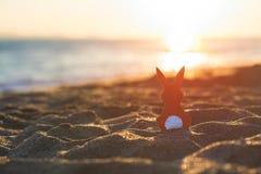 Creatieve Pasen-conceptenfoto van rood document konijntje op het zand op het strand bij zonsondergang Concept royalty-vrije stock afbeeldingen