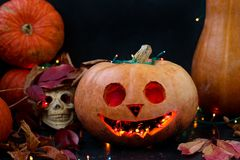 Creatieve samenstelling met een schedel en een pompoen voor Halloween stock foto