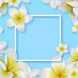 Creatieve tropische bloem met kader vectoreps 10 stock illustratie