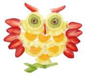 Creatieve van de het dessertuil van het fruitkind de vogelvorm Royalty-vrije Stock Foto