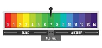 Creatieve vectordieillustratie van pH schaalwaarde op achtergrond wordt geïsoleerd Chemisch infographic kunstontwerp Abstract con royalty-vrije illustratie
