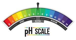 Creatieve vectordieillustratie van pH schaalwaarde op achtergrond wordt geïsoleerd Chemisch infographic kunstontwerp Abstract con stock illustratie