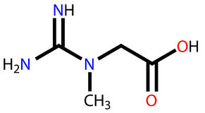Creatine structural formula Stock Image