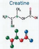 Creatinemolecule Structurele chemische formule en moleculewijze Royalty-vrije Stock Foto's