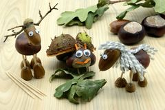Creating acorn chestnut figures bug deer and horse in autumn time. childhood tinker.  stock photos