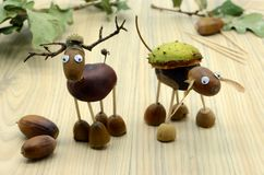 Creating deer made of acorn and chestnut figures in autumn time. childhood tinker.  stock photos