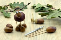 Creating deer made of acorn and chestnut figures in autumn time. childhood tinker.  royalty free stock photo