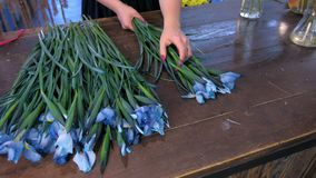 Florist woman makes bouquet from blue iris flowers on table for sale in shop. stock footage