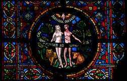 Creation of Adam and Eve. Stained glass window in the church of Dinant, Belgium Stock Image
