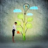 Creation of ideas Stock Photos
