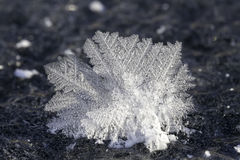 Creations the cold weather - macro landscape Royalty Free Stock Photos