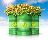 Group of green biofuel drums with sunflowers against blue sky wi. Creative abstract ecology, alternative sustainable energy and environment protection saving royalty free illustration