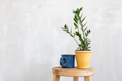 Composed flowerpot and mug Stock Image