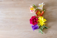 Creative arrangement made of different flowers on wooden background with space for text. Royalty Free Stock Image