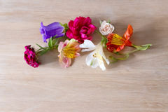 Creative arrangement made of different flowers on wooden background with space for text. Royalty Free Stock Images