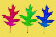 Creative autumn background. Abstract background of colorful leaves. Stock Photo