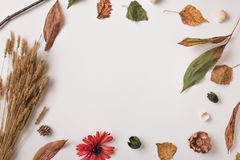 Creative autumn background with empty space Royalty Free Stock Photography