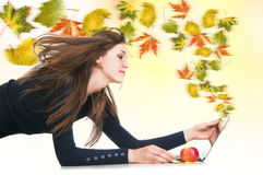 Creative autumn maple leaves wind from laptop Stock Images
