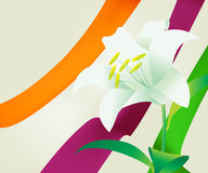 Creative B 01. Abstract floral background , spring back Royalty Free Stock Photos