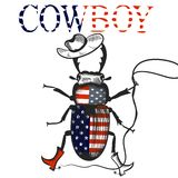 Creative background with cowboy beetle colored in USA flag rodeo Stock Photography