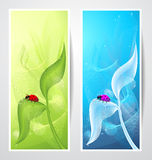 Creative banners with ladybird on leaf Stock Image
