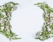 Creative beautiful floral frame layout with green flowers, petals and leaves on white background. Top view stock photography