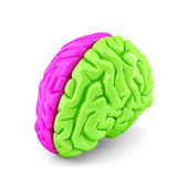 Creative brain concept. Isolated. Contains clipping path Stock Photography
