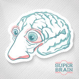 Creative Brain Illustration. For design of poster, flyer, cover, Stock Photography